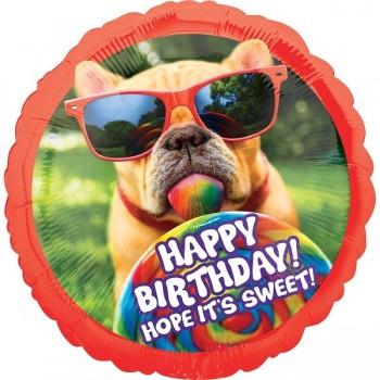 Globo Perro Gafas Sweet B-Day