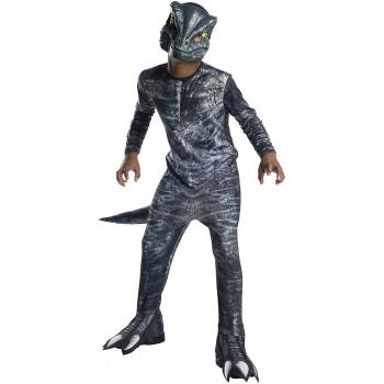Disf.Inf.Velociraptor Clas.5-7