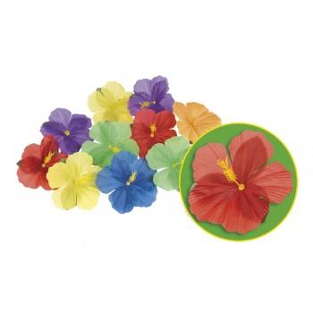B/24 Flores Hibisco