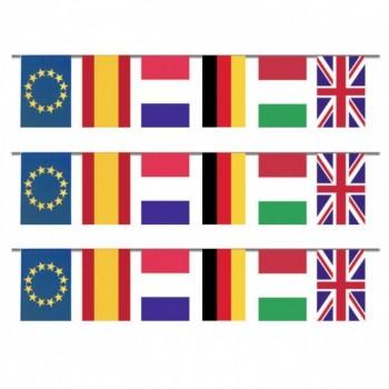 Bandera Internacional 50M Plas