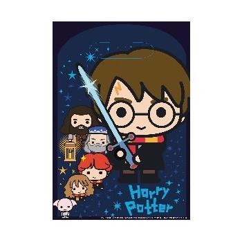 P/8 Bolsa Harry Potter